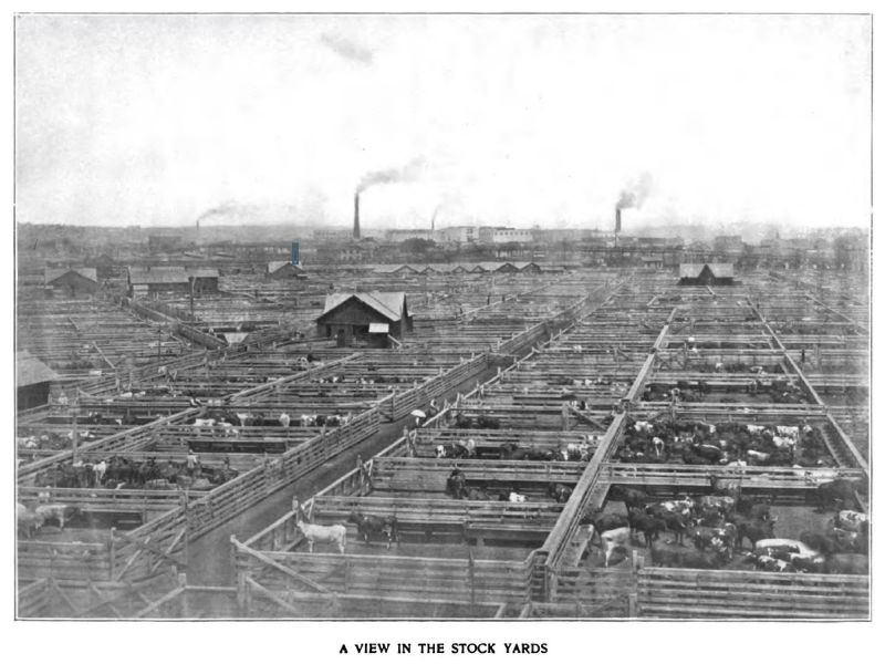 a view in the stock yards